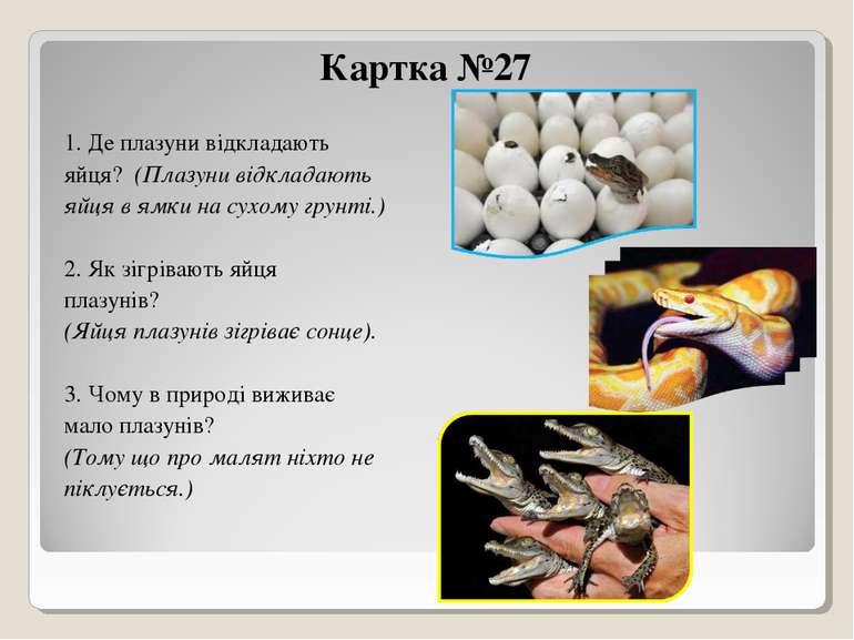 Картка №27 1. Де плазуни відкладають яйця? (Плазуни відкладають яйця в ямки н...