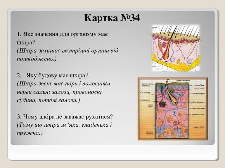 Картка №34 1. Яке значення для організму має шкіра? (Шкіра захищає внутрішні ...