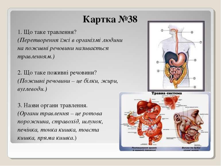 Картка №38 1. Що таке травлення? (Перетворення їжі в організмі людини на пожи...