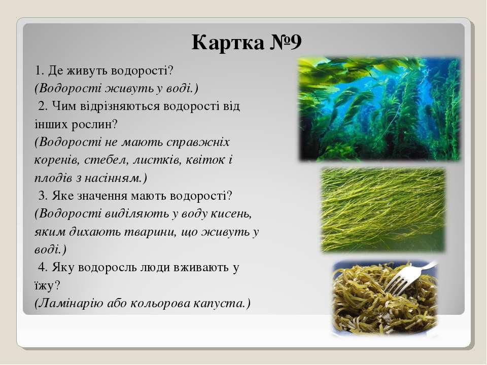 Картка №9 1. Де живуть водорості? (Водорості живуть у воді.) 2. Чим відрізня...