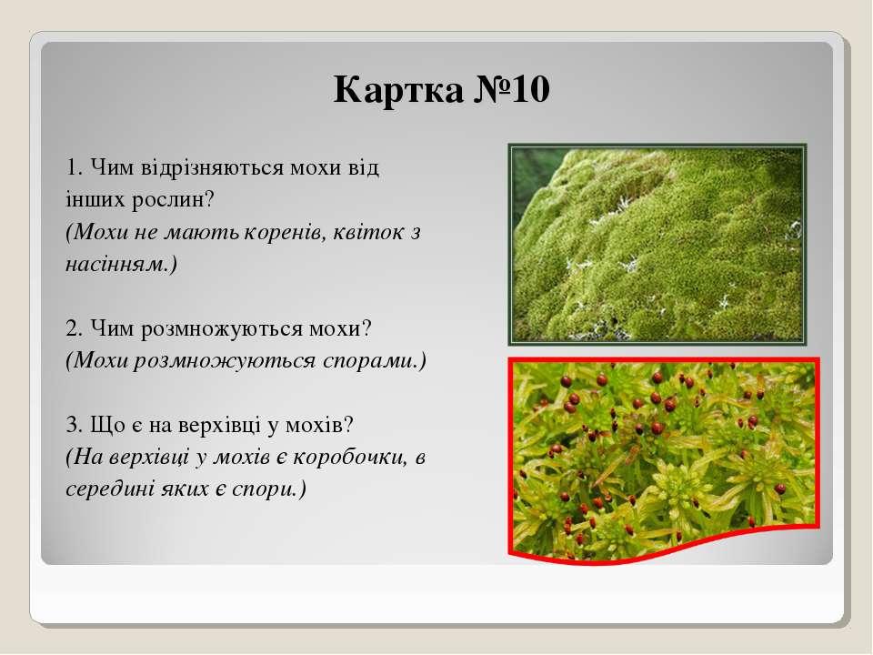 Картка №10 1. Чим відрізняються мохи від інших рослин? (Мохи не мають коренів...