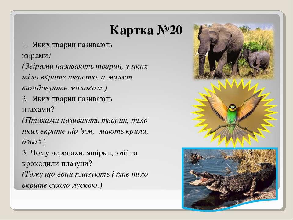 Картка №20 1. Яких тварин називають звірами? (Звірами називають тварин, у яки...