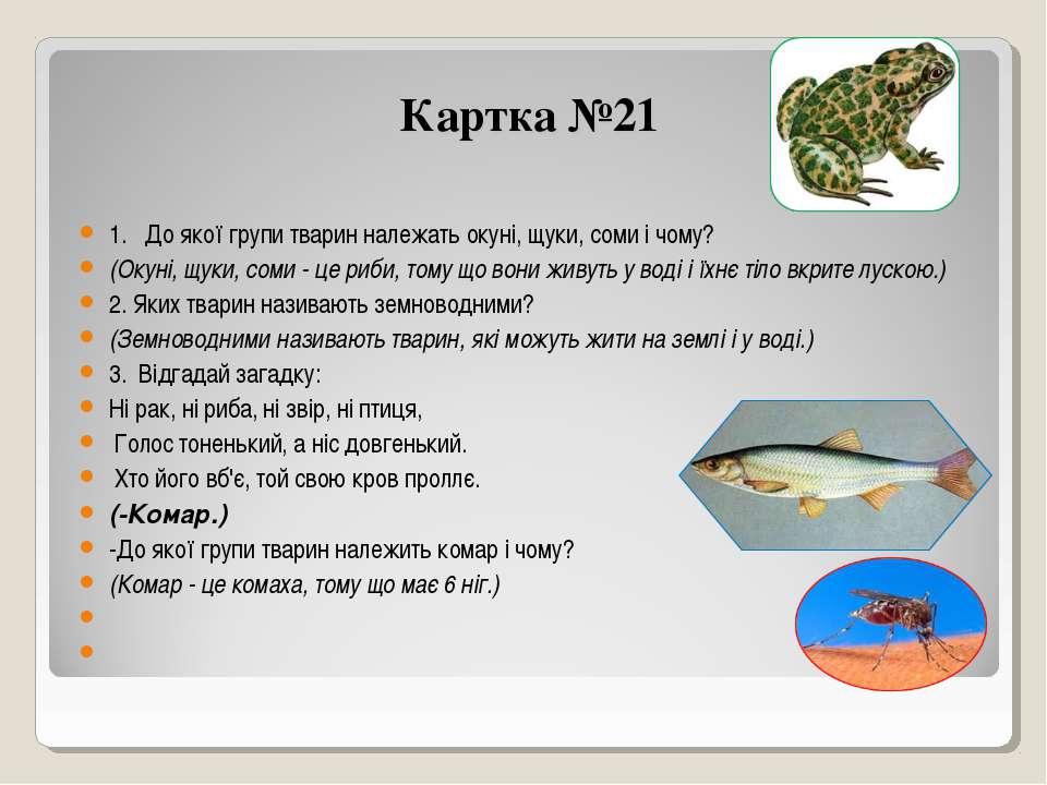 Картка №21 1. До якої групи тварин належать окуні, щуки, соми і чому? (Окуні,...