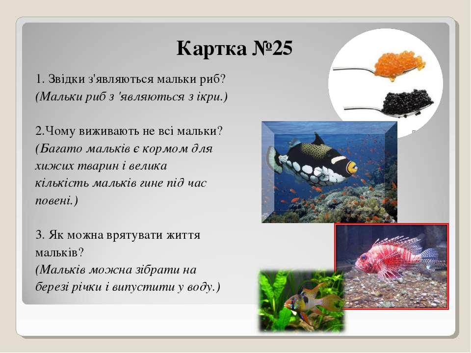 Картка №25 1. Звідки з'являються мальки риб? (Мальки риб з 'являються з ікри....