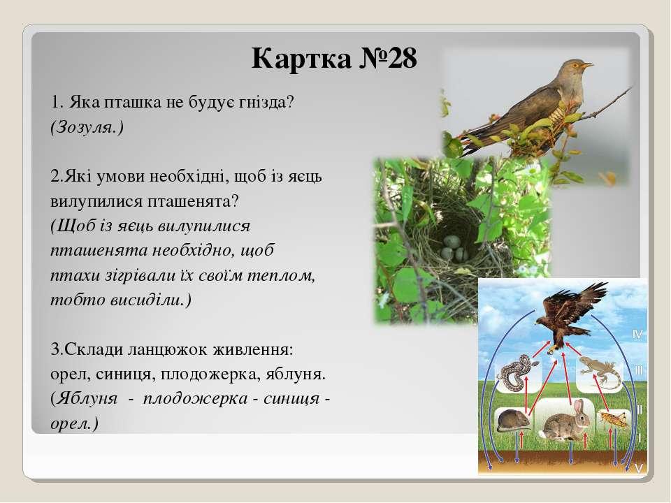 Картка №28 1. Яка пташка не будує гнізда? (Зозуля.) 2.Які умови необхідні, що...