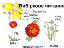 1 ряд – для Метелика. Потрібні квіти, назви яких мають 1 склад. Відшукайте і ...