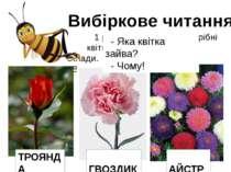 Вибіркове читання 1 ряд – для Бджілки. Потрібні квіти, назви яких мають 3 скл...