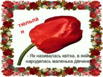 - Як називалась квітка, в якій народилась маленька дівчинка? тюльпан