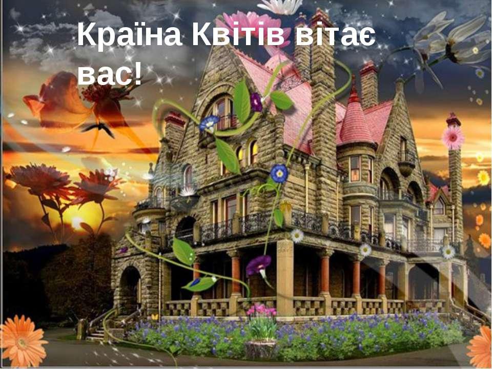 Країна Квітів вітає вас!