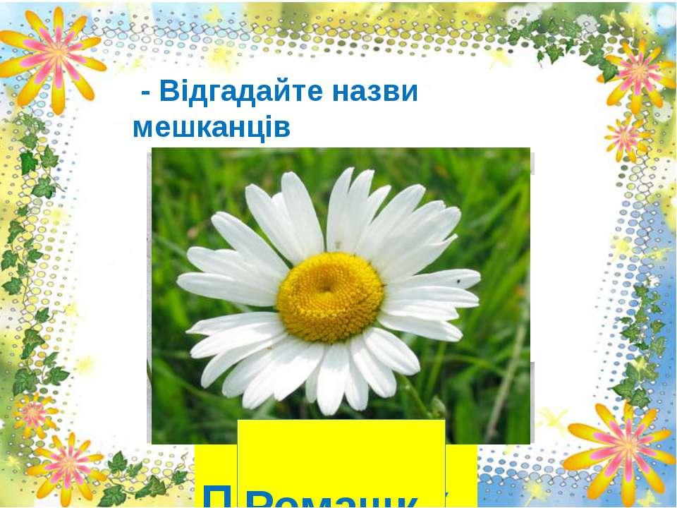 - Відгадайте назви мешканців Квіткової країни: Перші квіти проростають З цибу...