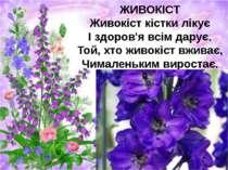 ЖИВОКІСТ Живокіст кістки лікує І здоров'я всім дарує. Той, хто живокіст вжива...