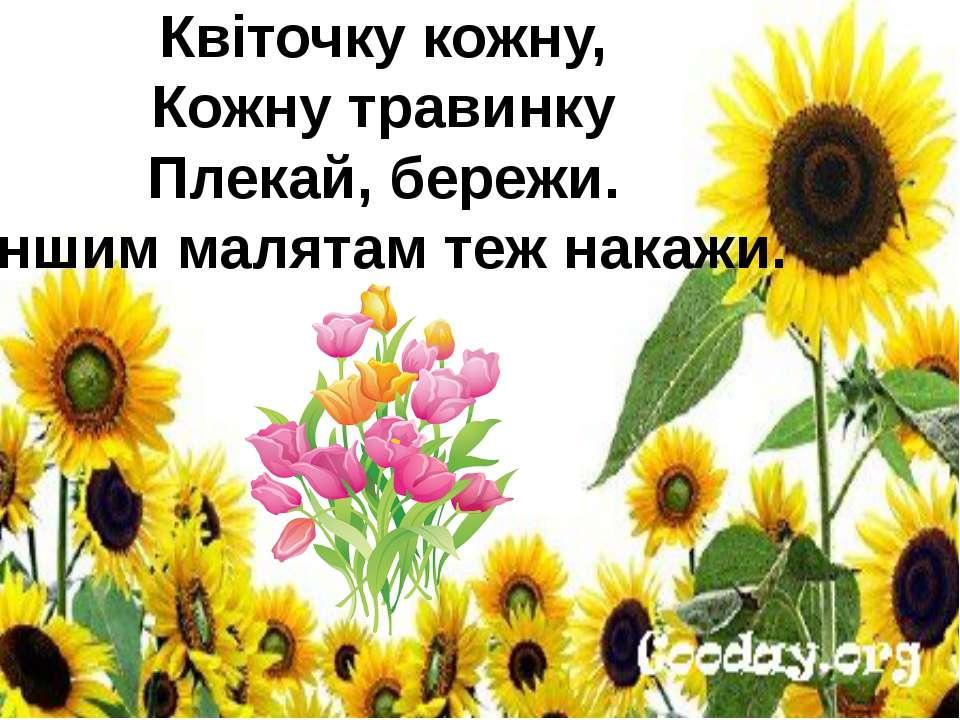 Квіточку кожну, Кожну травинку Плекай, бережи. Іншим малятам теж накажи.