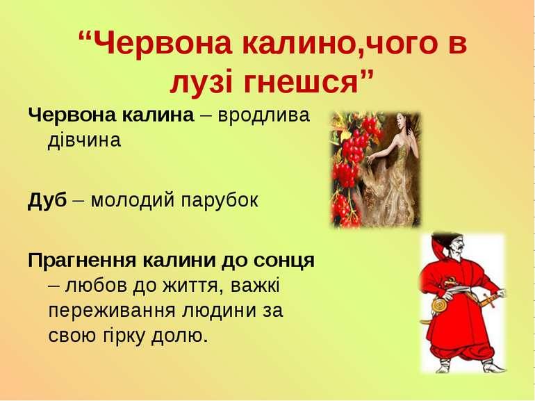 """""""Червона калино,чого в лузі гнешся"""" Червона калина – вродлива дівчина Дуб – м..."""