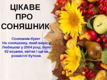ЦІКАВЕ ПРО СОНЯШНИК Соняшник-букет На соняшнику, який виріс у Любешові у 2004...