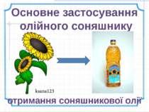 Основне застосування олійного соняшнику отримання соняшникової олії