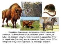 Надмірне і хижацьке полювання стало причиною загибелі та зменшення кількості ...