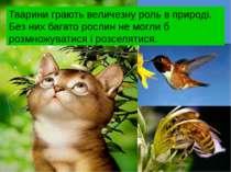 Тварини грають величезну роль в природі. Без них багато рослин не могли б роз...