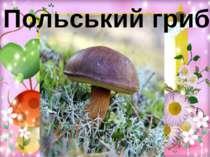 Польський гриб