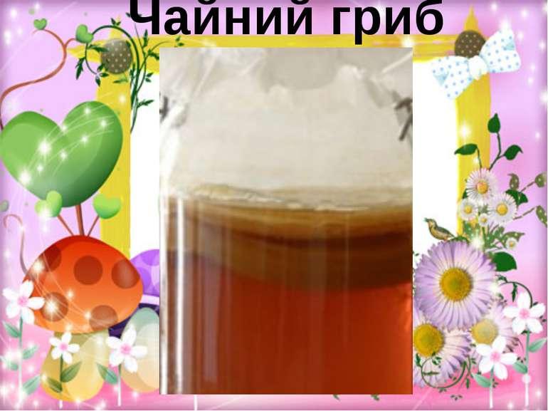 Чайний гриб