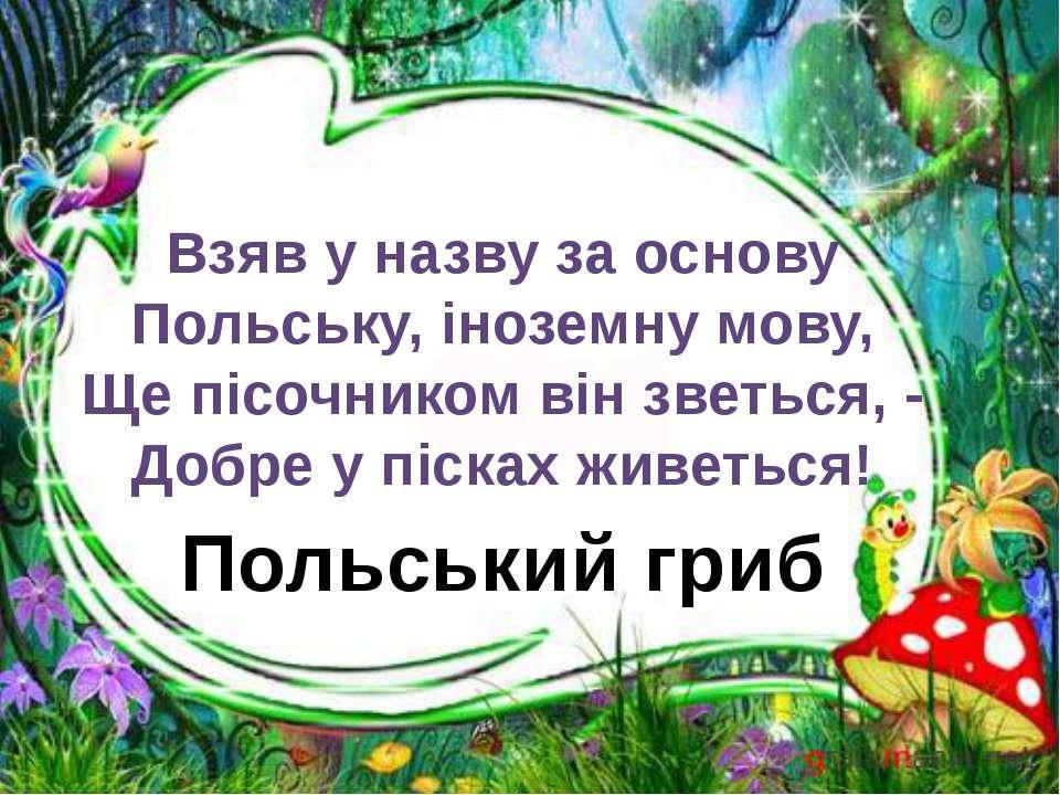 Польський гриб Взяв у назву за основу Польську, іноземну мову, Ще пісочником ...