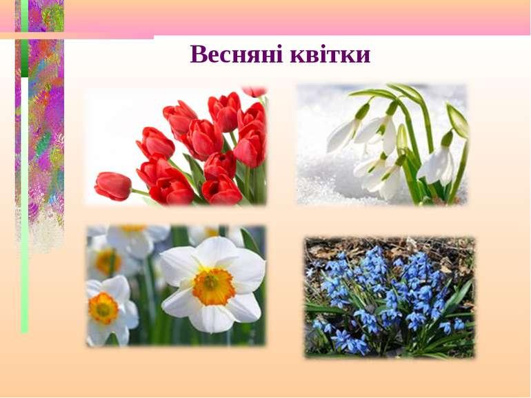Весняні квітки