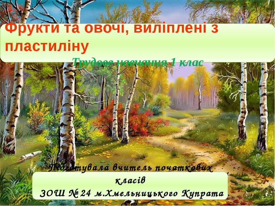 Підготувала вчитель початкових класів ЗОШ № 24 м.Хмельницького Купрата О.В. Ф...