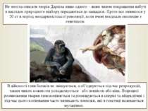 Не змогла описати теорія Дарвіна лише одного – яким чином покращення набуті в...