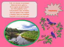 Той, хто бачив, як розкішні Маки вогняно цвітуть, Як в садках дозрілі вишні А...