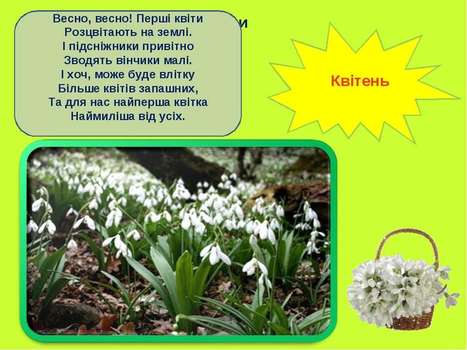 Весно, весно! Перші квіти Розцвітають на землі. І підсніжники привітно Зводят...
