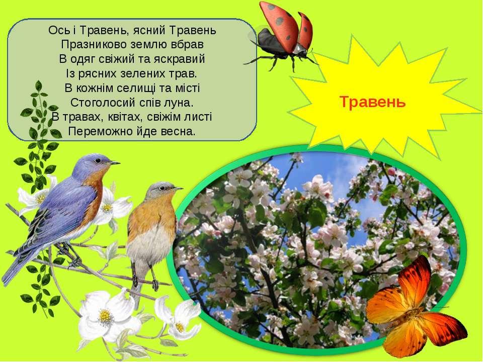 Ось і Травень, ясний Травень Празниково землю вбрав В одяг свіжий та яскравий...