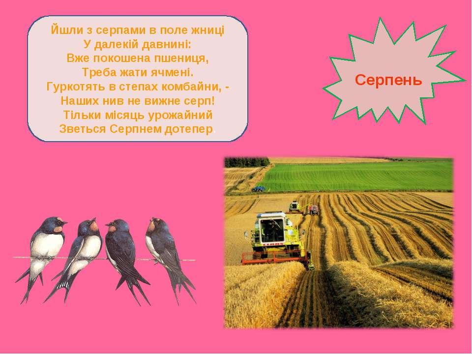 Йшли з серпами в поле жниці У далекій давнині: Вже покошена пшениця, Треба жа...