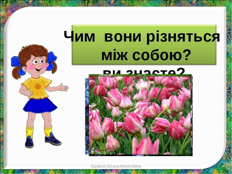 Куракса Оксана Миколаївна Куракса Оксана Миколаївна