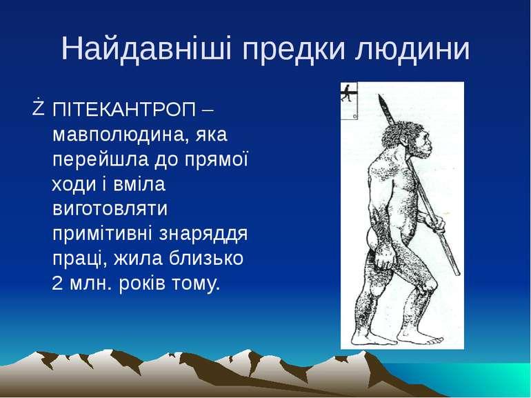 Найдавніші предки людини ПІТЕКАНТРОП – мавполюдина, яка перейшла до прямої хо...
