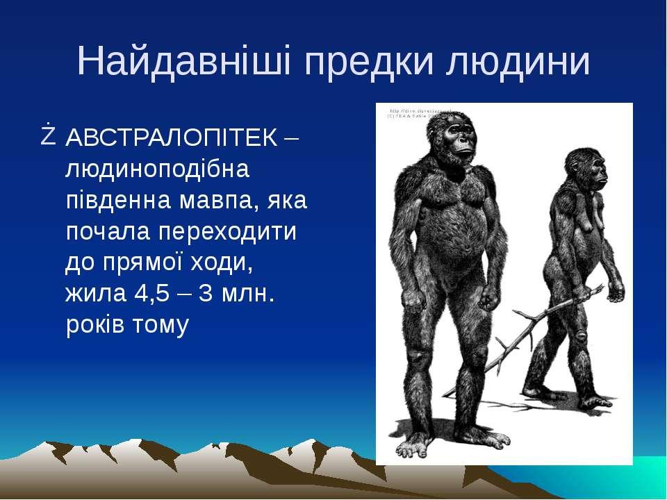 Найдавніші предки людини АВСТРАЛОПІТЕК – людиноподібна південна мавпа, яка по...