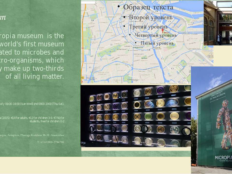 Museum Micropia museum is the world's first museum dedicated to microbes and ...
