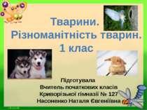 Тварини. Різноманітність тварин. 1 клас Підготувала Вчитель початкових класів...