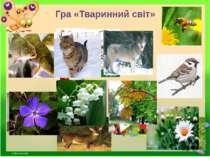 Гра «Тваринний світ»