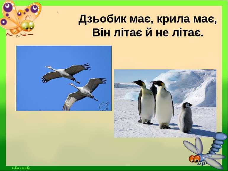 Дзьобик має, крила має, Він літає й не літає.
