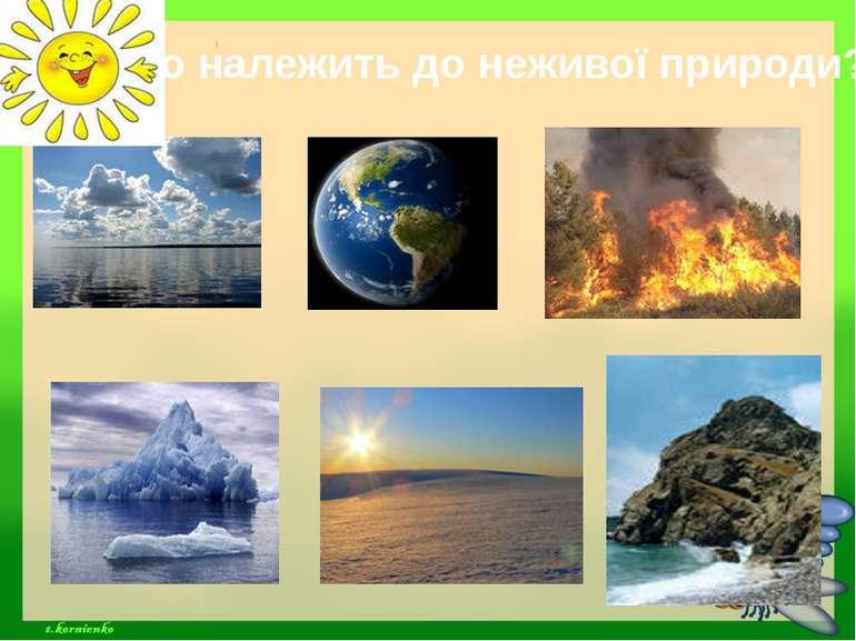 Що належить до неживої природи?