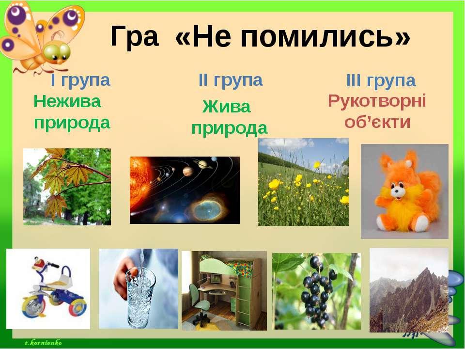 Гра «Не помились» Жива природа Нежива природа Рукотворні об'єкти І група ІІ г...