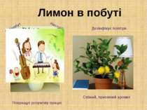 Лимон в побуті Добробут Настрій Дезінфікує повітря Свіжий, приємний аромат По...