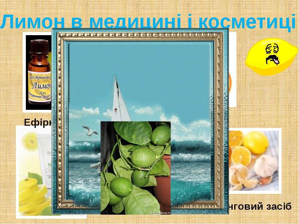 Лимон в медицині і косметиці Ефірні масла Профілактичний засіб Протицинговий ...