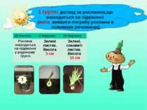 1 група: догляд за рослиною,що знаходиться на підвіконні (мета: виявити потре...