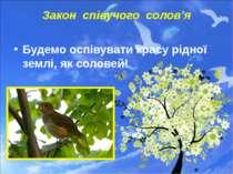 Закон співучого солов'я Будемо оспівувати красу рідної землі, як соловей!