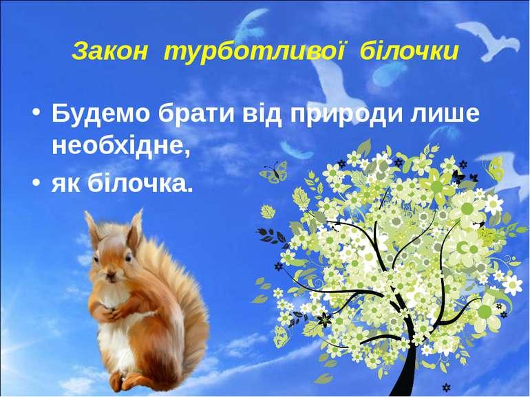 Закон турботливої білочки Будемо брати від природи лише необхідне, як білочка.