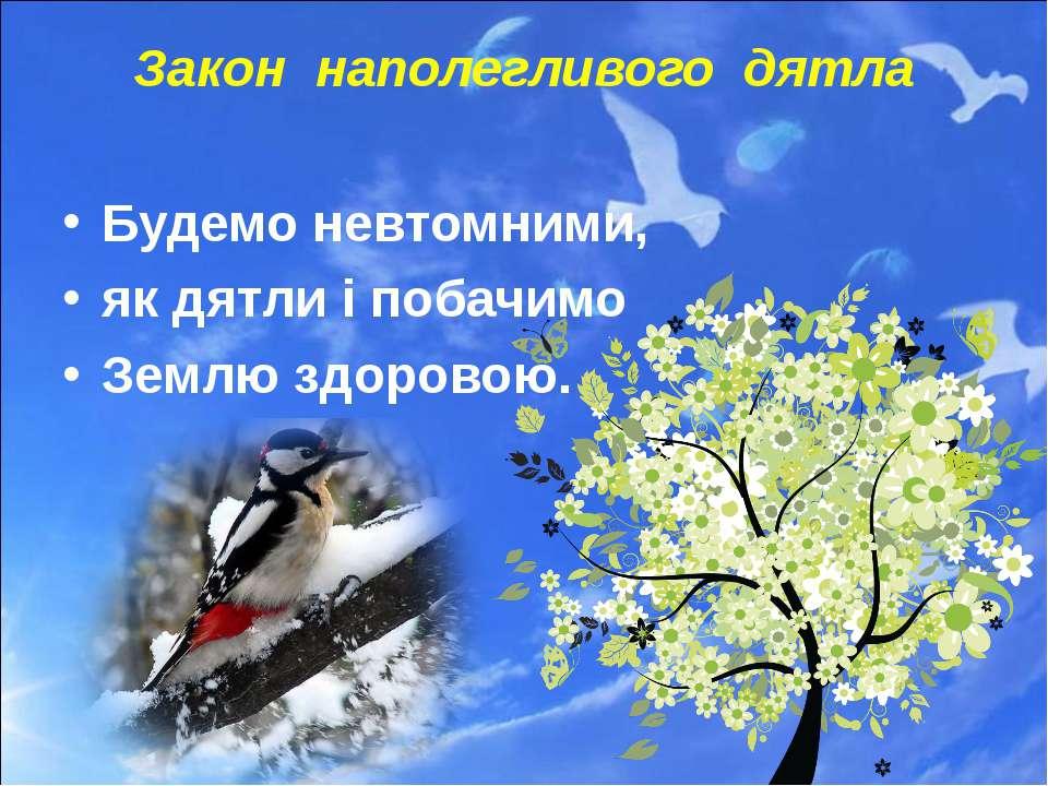 Закон наполегливого дятла Будемо невтомними, як дятли і побачимо Землю здоровою.
