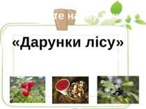 Прочитайте назву тексту «Дарунки лісу» Що може подарувати людям ліс восени?