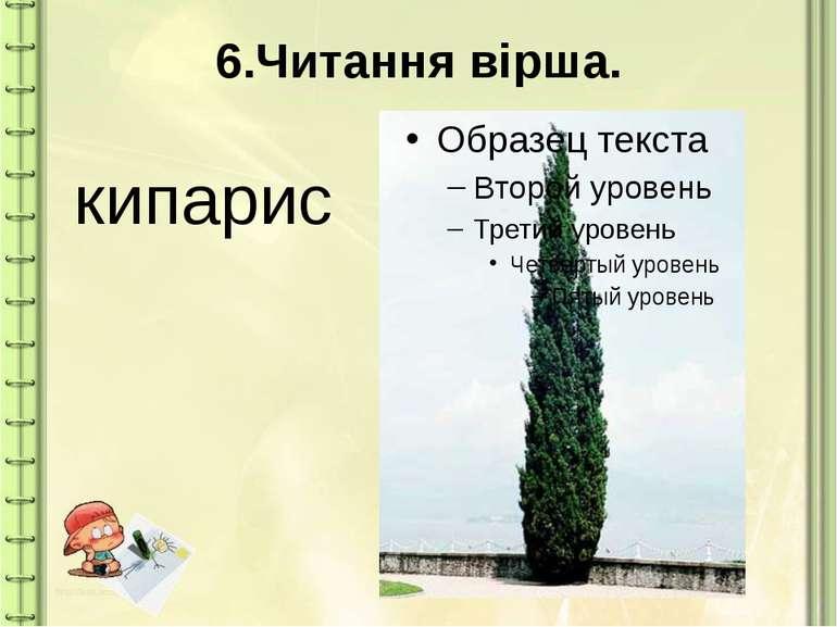 6.Читання вірша. кипарис