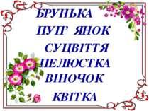 БРУНЬКА ПУП' ЯНОК СУЦВІТТЯ ПЕЛЮСТКА ВІНОЧОК КВІТКА