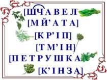 [ШЧ А В Е Л'] [М Й' А Т А] [К Р' І П] [Т М' І Н] [П Е Т Р У Ш К А] [К' І Н З А]